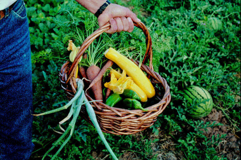 Why is Gardening Good for Me?