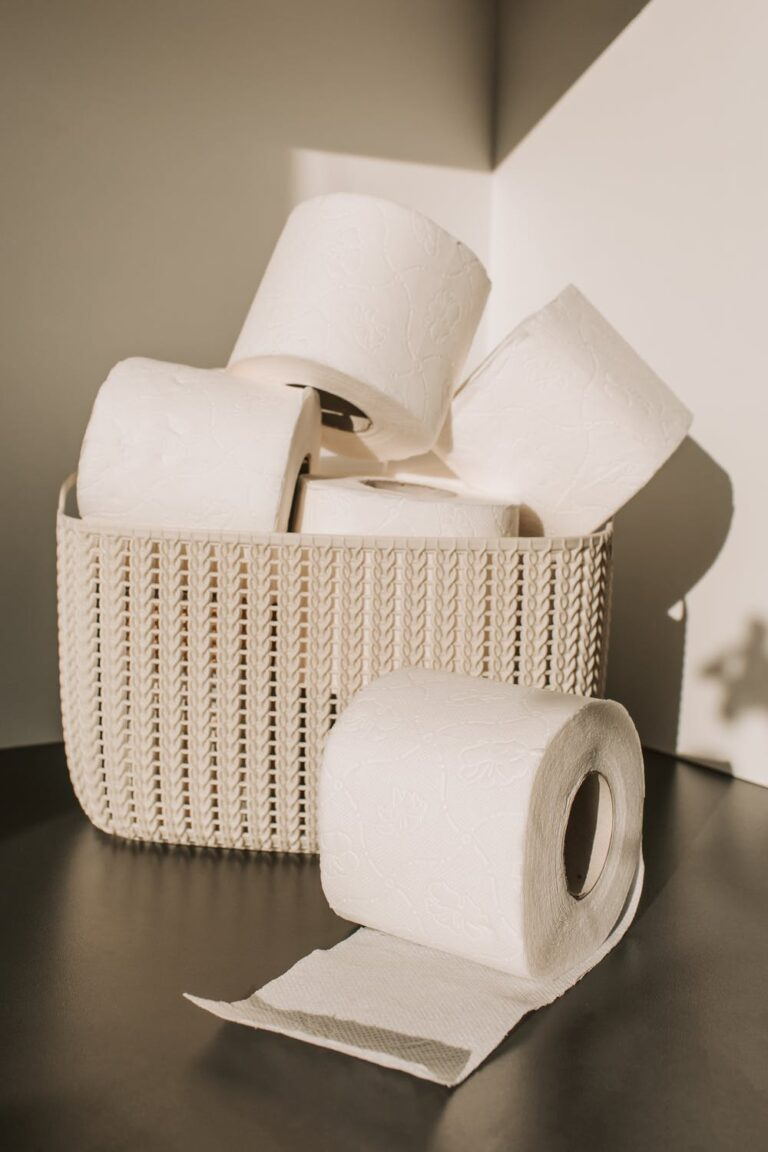 How To Replace Toilet Flapper