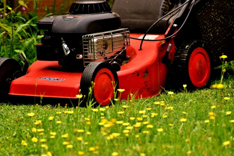 How to Use a Lawnmower: Tips for Maintaining Your Grass