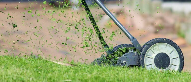 What are Grass Clippings? | 5 Benefits of Grasscycling